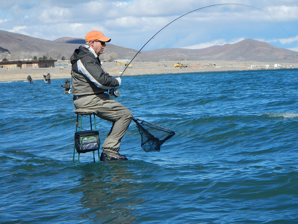 Pyramid lake fishout march 8 15 2014 bonneville fly for Fly fishing nevada